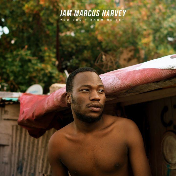 Marcus Harvey – I Am Marcus Harvey [Album]